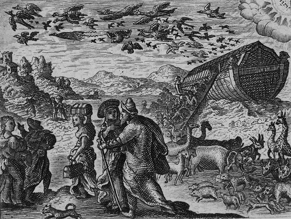 distorted-Noahs-ark