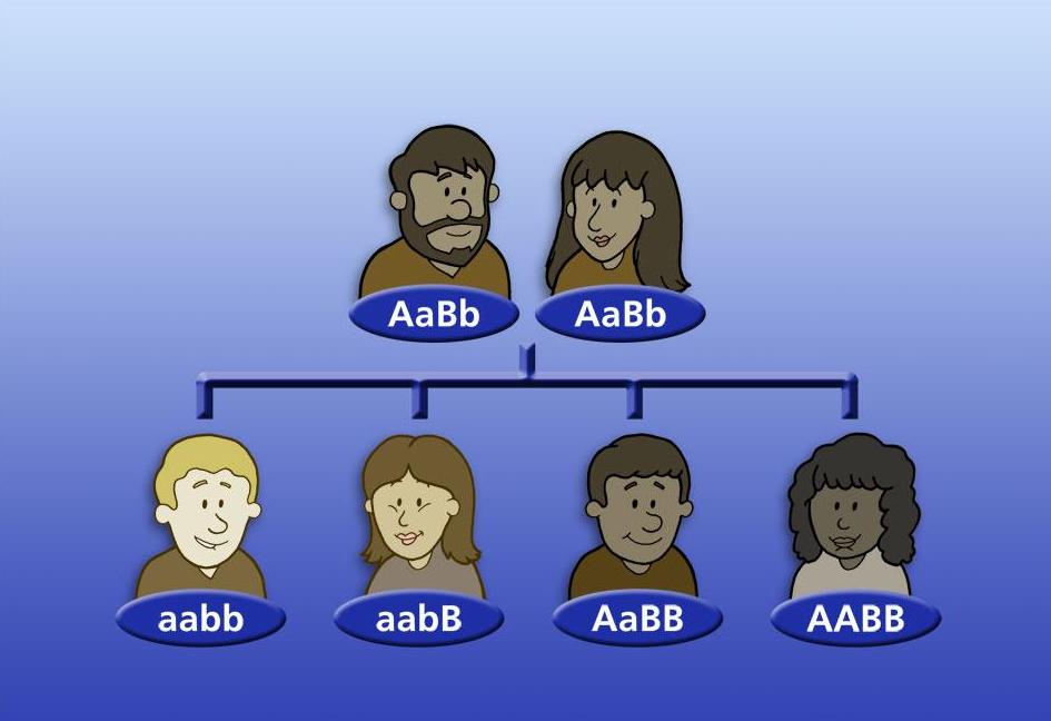 Adam-Eve-skin-colour