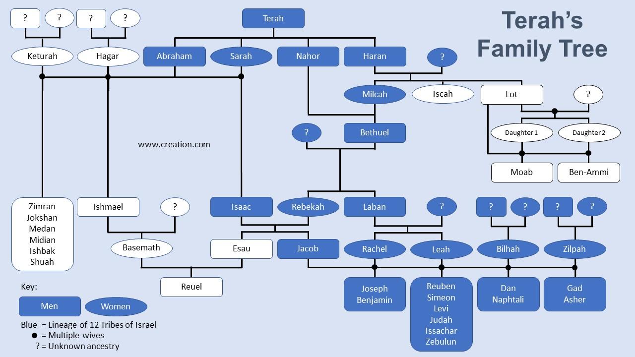 Terah-family-tree