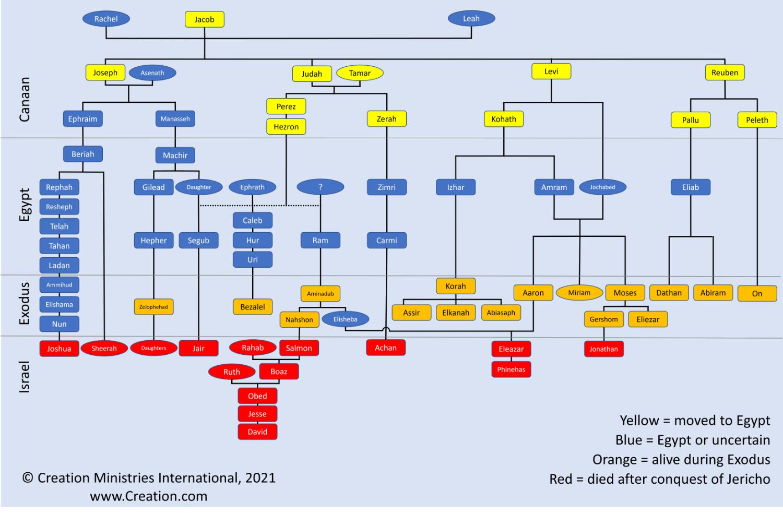 Genealogies-that-span-the-Sojourn