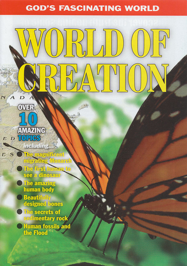 World of Creation