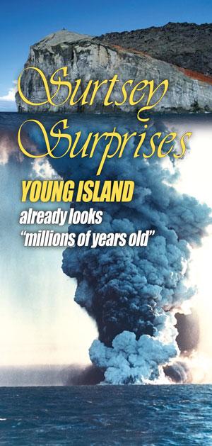 Surtsey Surprises