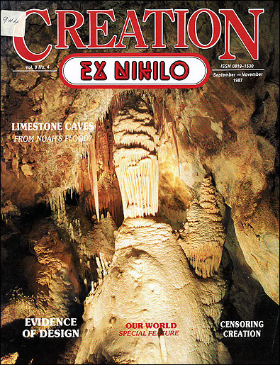 Limestone caves - creation com