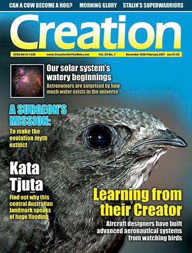 Adam and the animals - Day 6 - creation com