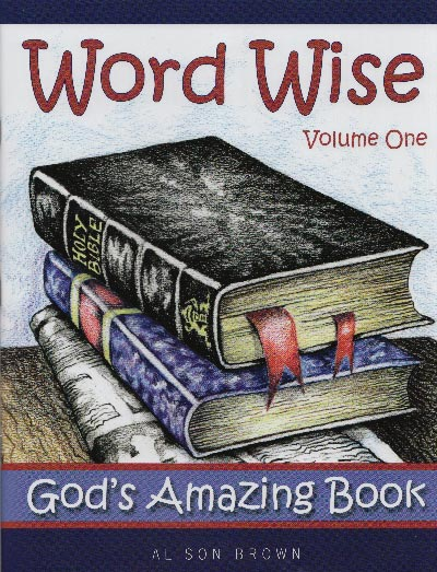 Word Wise Vol 1: God's Amazing Book