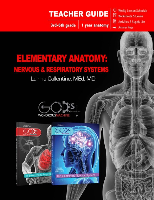 Elementary Anatomy Teacher's Guide
