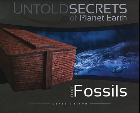Flood Fossils