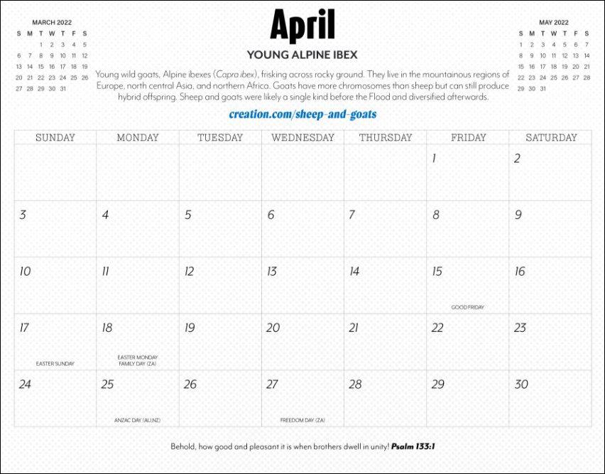 Month 2022 calendar