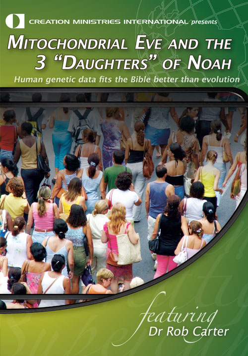 "Mitochondrial Eve and the 3 ""Daughters of Noah"""