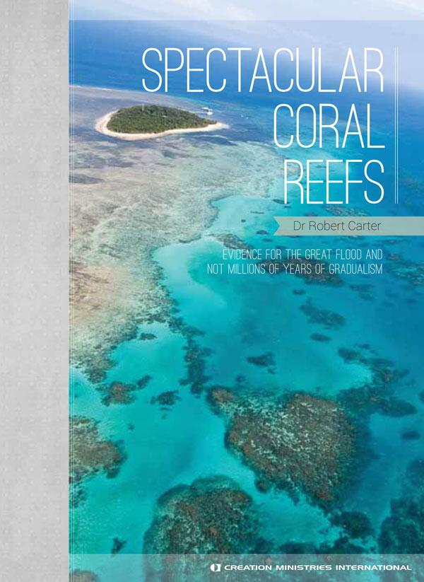 Spectacular Coral Reefs