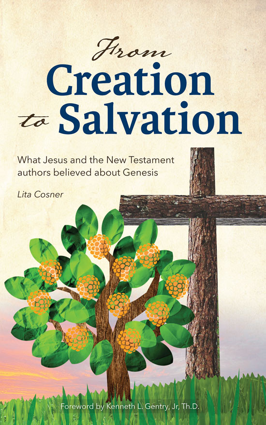 From Creation to Salvation