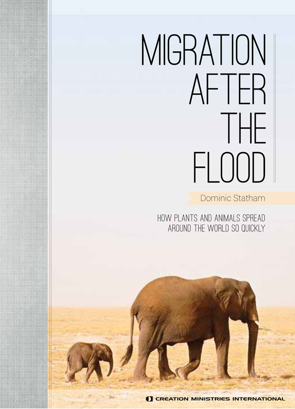 Migration After the Flood