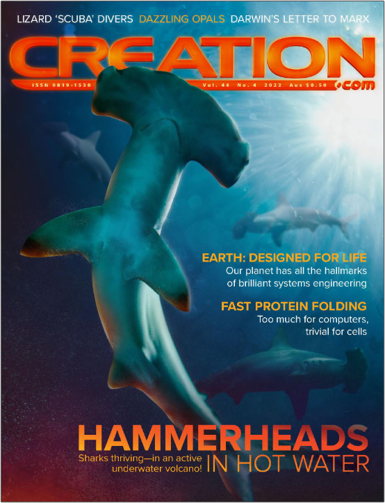 Creation Magazine - 1 Year Print & Digital