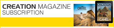 View Creation Magazine Subscription Options